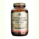 Solgar Psyllium Husks Fibre 500 mg (Vlozaad)